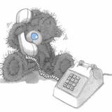 Teddy (118)