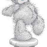 Teddy (120)