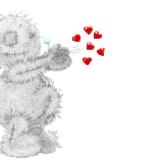 Teddy (13)