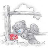 Teddy (145)