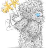 Teddy (146)