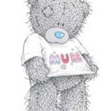 Teddy (149)
