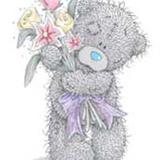 Teddy (150)