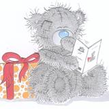 Teddy (15)