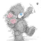 Teddy (162)