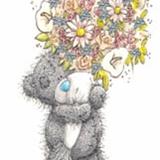 Teddy (166)