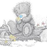 Teddy (169)