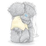 Teddy (16)