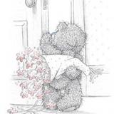 Teddy (170)