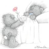 Teddy (180)