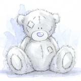 Teddy (28)