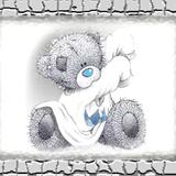 Teddy (29)