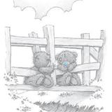 Teddy (44)