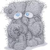 Teddy (66)