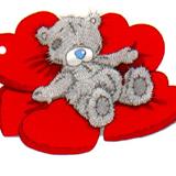 Teddy (69)