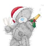 Teddy (6)