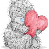 Teddy (71)