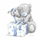 Teddy (7)