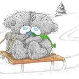 Teddy (82)