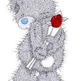 Teddy (85)